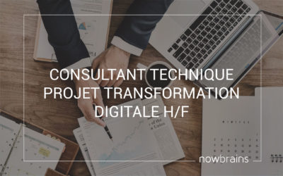 Consultant technique Projet Transformation Digitale (H/F)