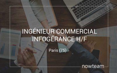 Ingénieur commercial Infogérance (H/F)