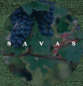 Savas Cas client