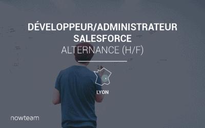 Alternance Développeur / Administrateur Salesforce (H/F) LYON