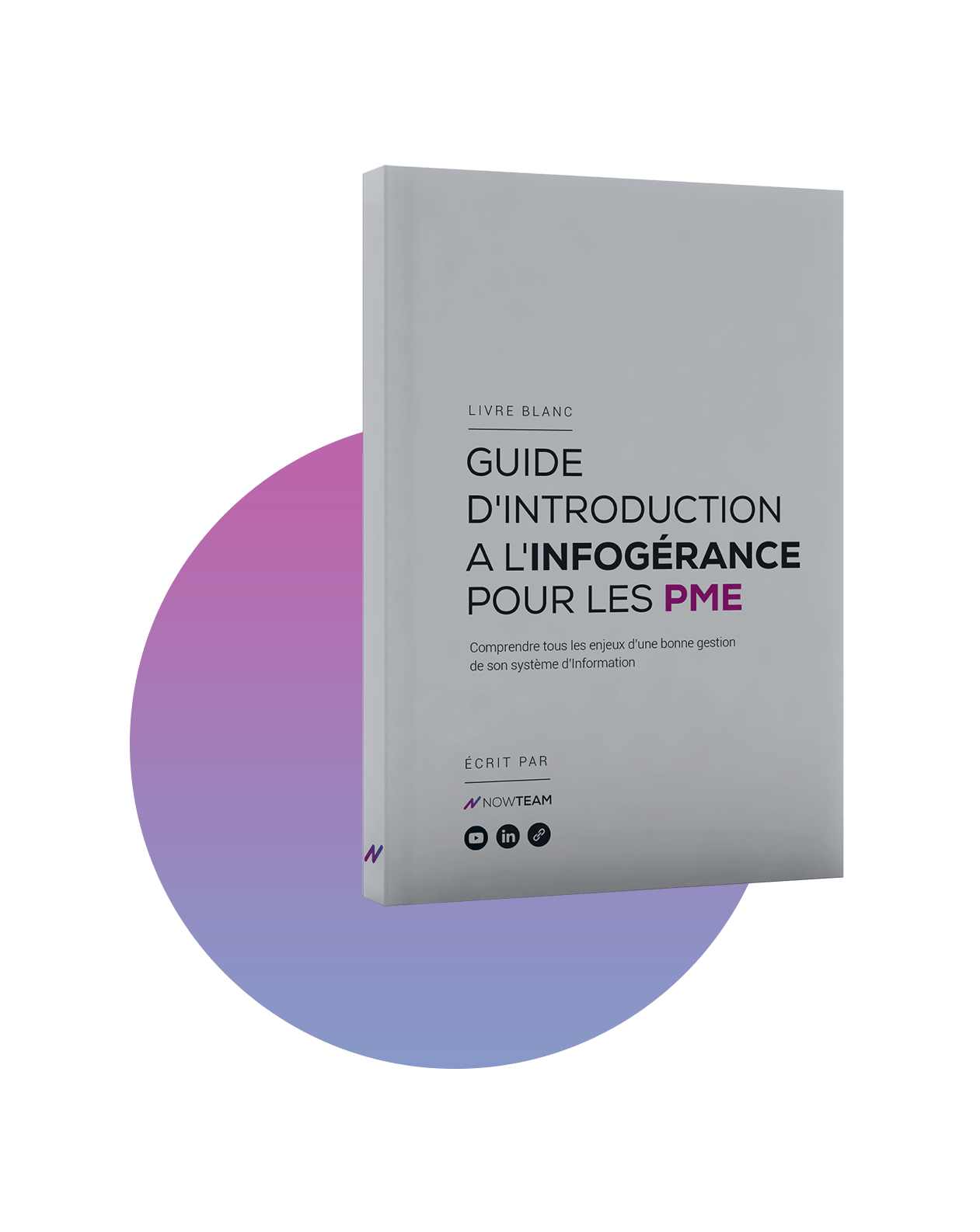 ebook infogerance pme